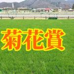 菊花賞はスピードも重要!過去データと血統や今年の出走馬を検証