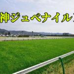 阪神ジュべナイルF・今年は実力差明白、過去のデータを重要視